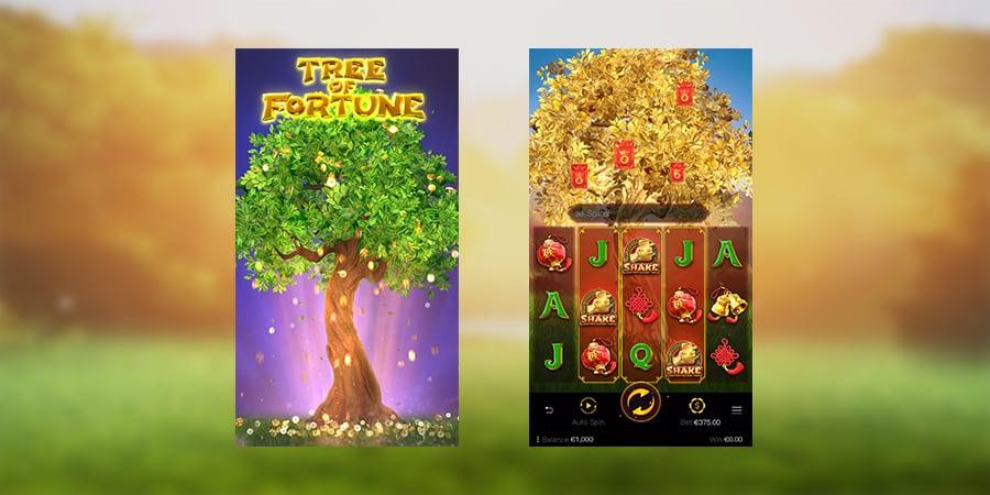 รีวิวสล็อตแตกง่าย Tree Of Fortune 2
