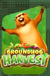 groundhog harvest game