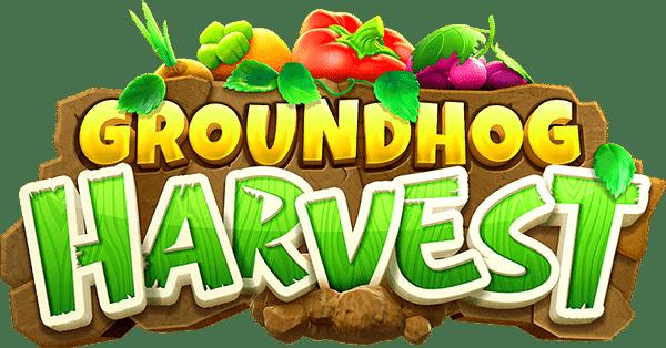 logo groundhog harvest