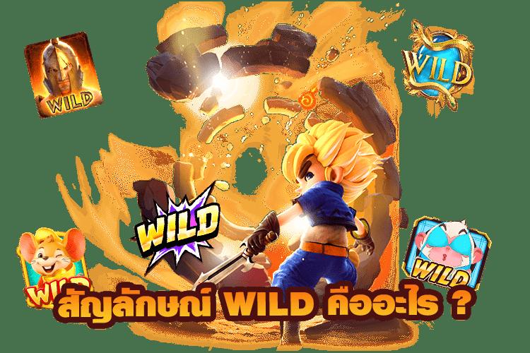 สัญลักษณ์ Wild คืออะไร